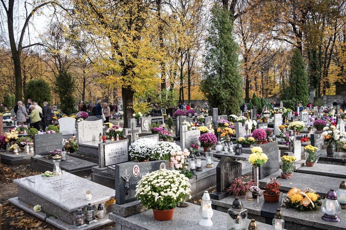 Cmentarz w Katowicach